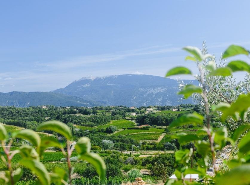 Photo paysage Mont Ventoux